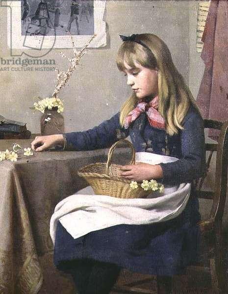 Primrose Day, 1885