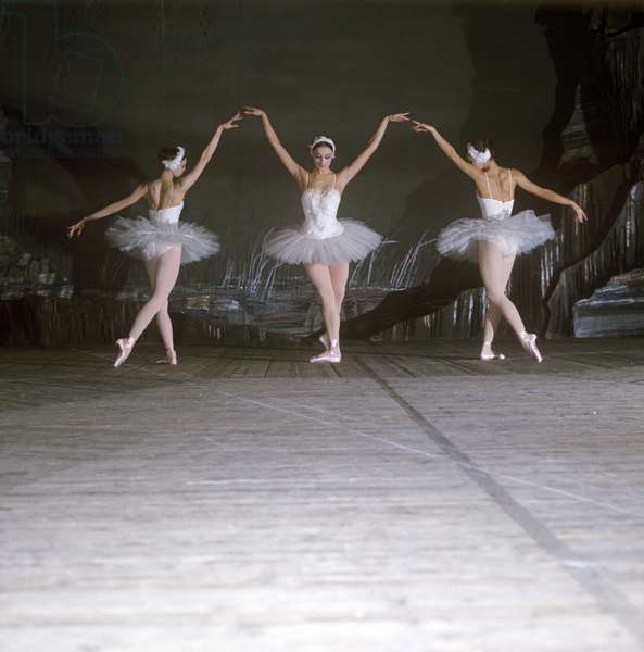 Ballet dancers performing a scene from Swan Lake, at the Stanislavsky and Nemirovich-Danchenko Theatre, Moscow 1975 (photo)