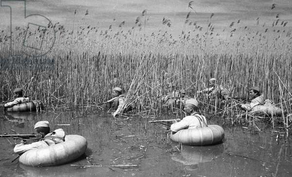 Scouts cross reed marshes in the Krasnodar Territory, Alpert/Sputnik (photo)