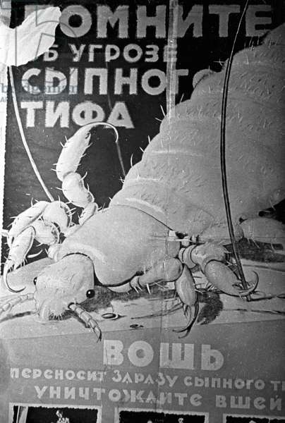 Nikolai Deni's Poster 'Remember About the Threat of Typhus. Lice Transmit the Infection. Kill Lice!' Ria Novosti/Sputnik (litho)