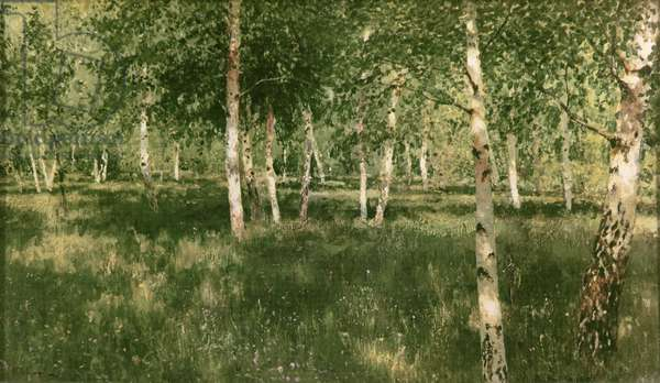 Birch Copse, 1889 (oil on canvas)