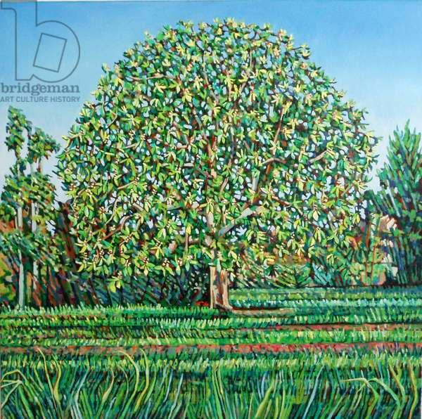 Bow Tree Spring, (oil on canvas)