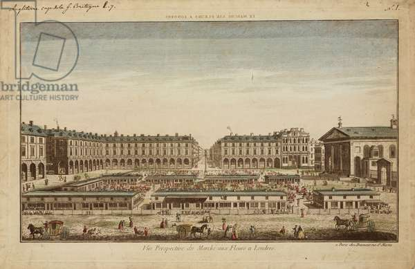 Perspective View of Covent Garden Flower Market (coloured engraving)