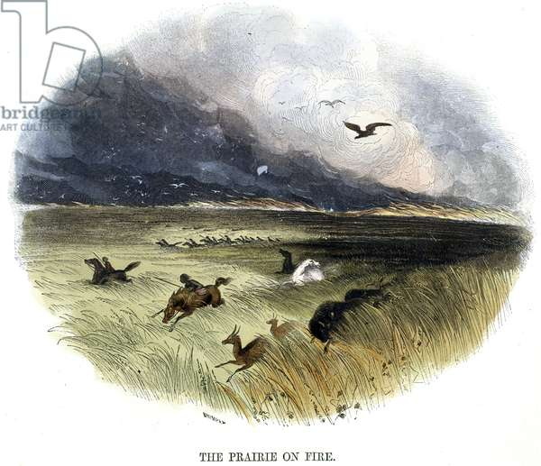 Prairie on Fire, from 'Phenomena of Nature', 1849 (coloured engraving)