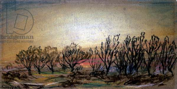 Afterglow Following Sunset, 10th May 1884 (pastel on paper)