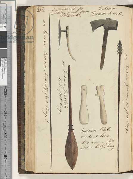 Page 219. An Indian launce; instrument for cutting wood, from Otaheite; Indian tomahawk; an Indian javelin; Indian Clubs made of bone; an Indian Spear, 1810-17 (w/c & manuscript text)