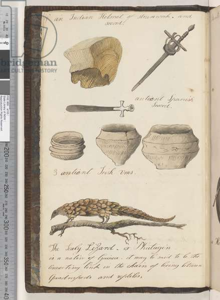 Page 4. An Indian helmet of strawwork and sword; an antient Spanish sword; 3 antient Irish urns; the Scaly Lizard, or Phatagin, 1810-17 (w/c & manuscript text)