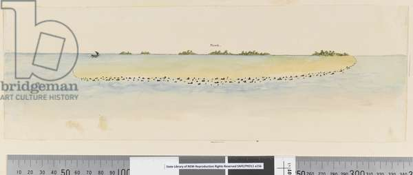 Page 25b/b Profile of unidentified Pacific Island showing a lagoon, 1768-75 (w/c)