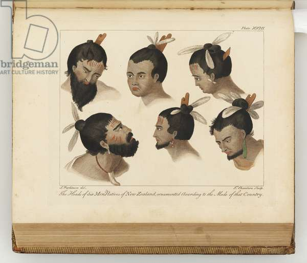 The heads of six men, illustration from 'A journal of a voyage to the South Seas : in His Majesty's ship, the Endeavour', 1794 (hand-coloured engraving)