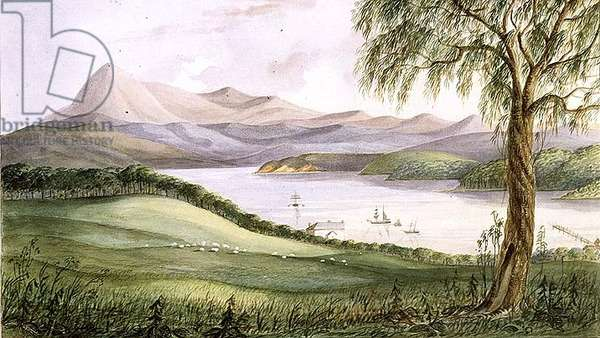 Twofold Bay, New South Wales, c.1860 (w/c)