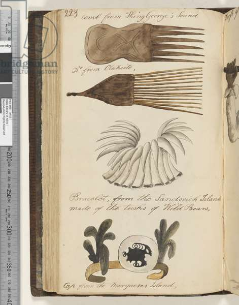 Page 223. Comb from King George's Sound; comb from Otaheite; bracelet, from the Sandwich Islands, made of the tusks of Wild Boars; cap from the Marquesas Island;, 1810-17 (w/c & manuscript text)