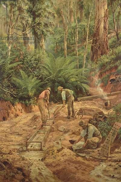 The Precious Metal, 1894