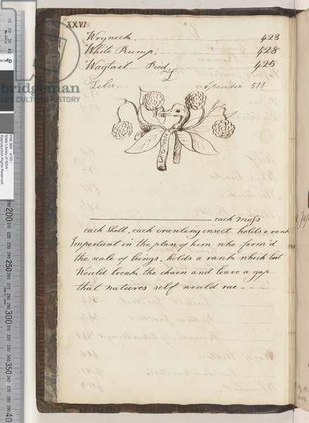 Index continued, 1810-17 (w/c & manuscript text)