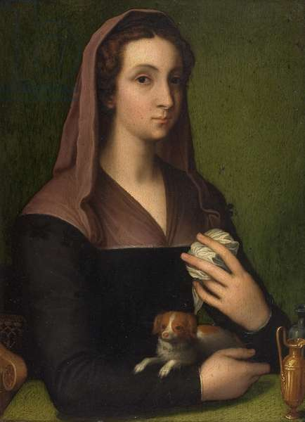 A portrait of a lady (oil on panel)