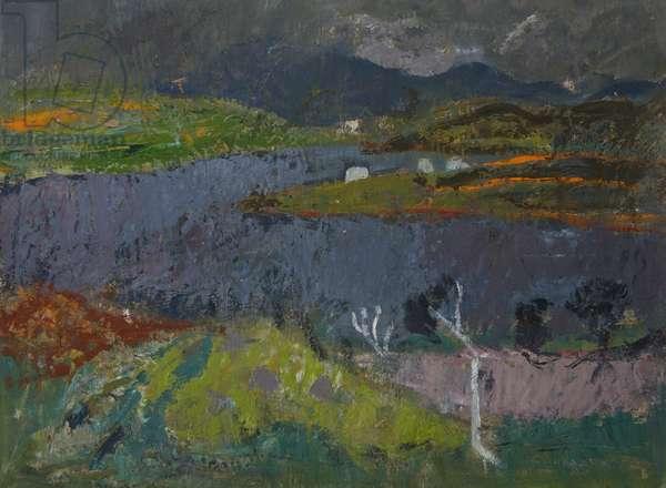 Landscape in Skye (oil on board)