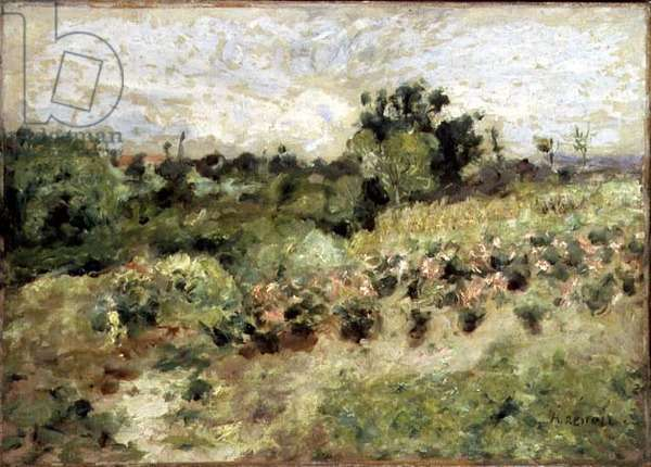 Field of Roses (oil on canvas)