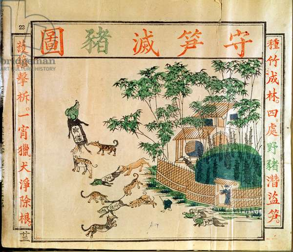 Chinese Propaganda Poster, c.1900 (woodblock print)
