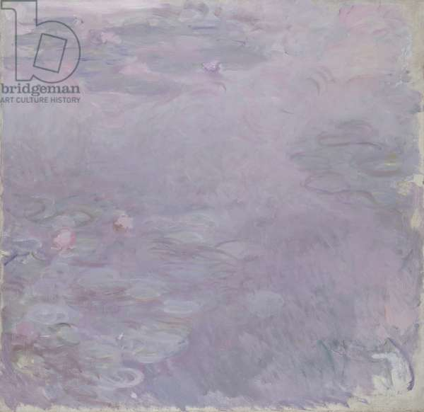 Light-coloured Waterlilies, 1917-25 (oil on canvas)