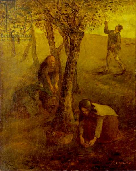 Gathering Apples (oil on canvas)