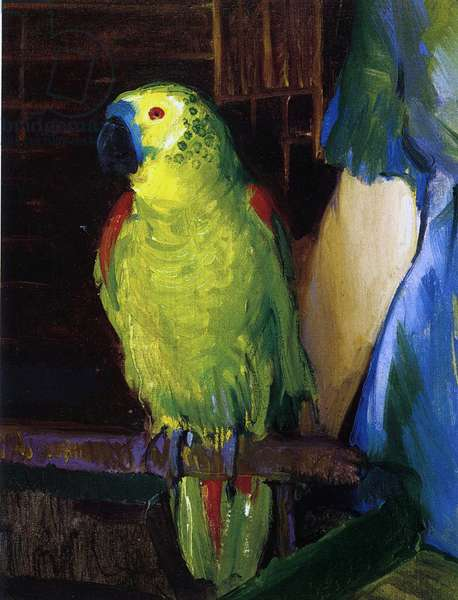 Parrot, 1915 (oil on canvas)