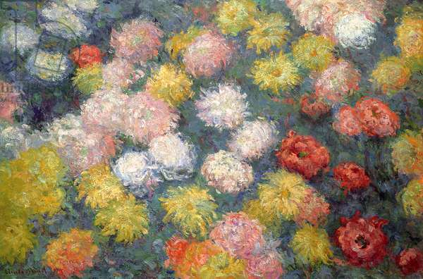 Chrysanthemums, 1897 (oil on canvas)