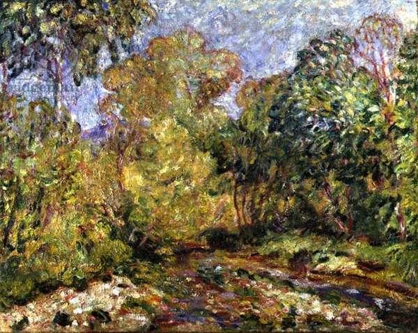 Landscape in the Midi, 1912 (oil on canvas)