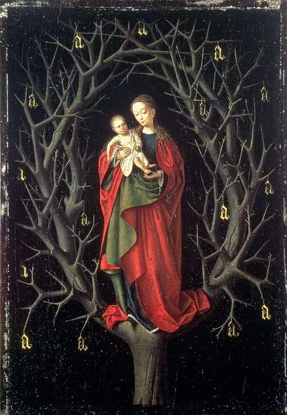 Our Lady of the Dry Tree c.1450 (oil on panel)
