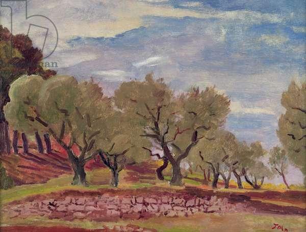 Provencal Landscape (oil on canvas)