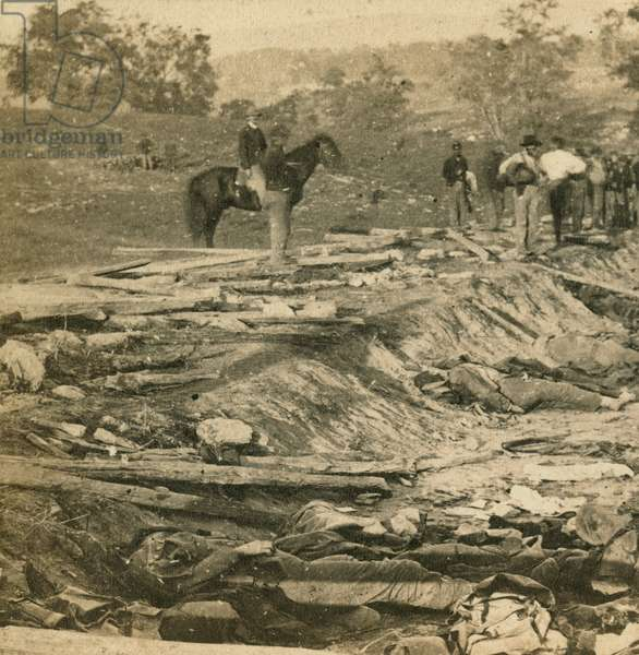 View of ditch on right wing, which had been used as a rifle pit by the Confederates at the Battle of Antietam, 1862 (b/w photo)