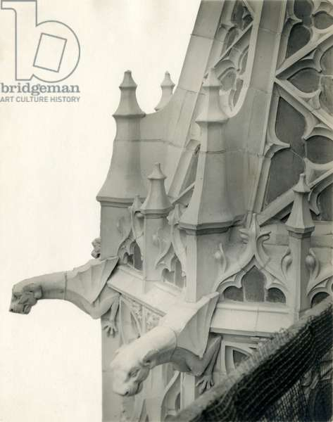 Terra Cotta Dog Heads - Woolworth Building Exterior, c.1911 (photo)