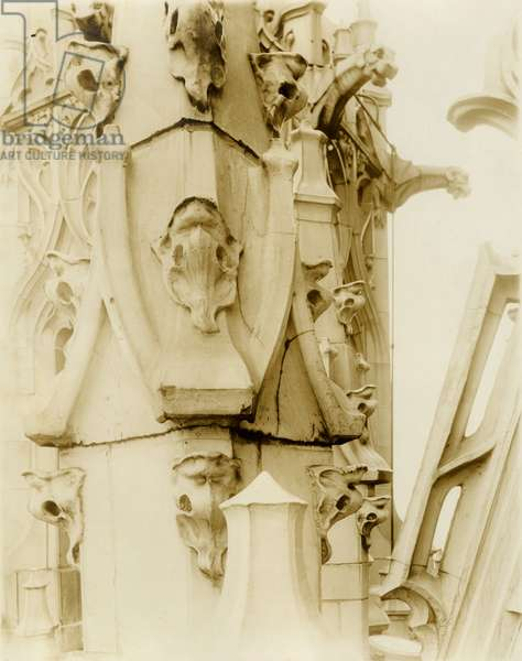 Detail of Woolworth Building terra cotta, showing dogs head details and damage to terra cotta, c.1912 (photo)