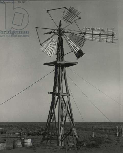 Drought years, Texas Panhandle, 1938 (b/w photo)