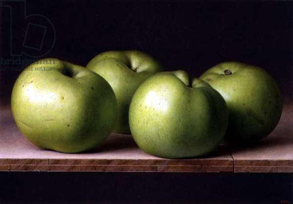 Four Apples, 1996 (oil on linen laid over board)