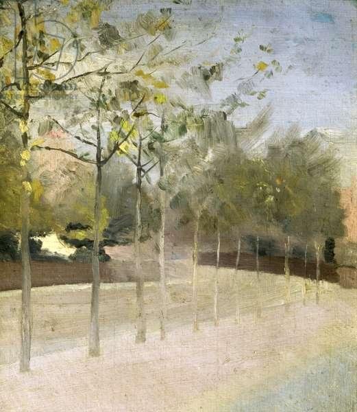 Chelsea Embankment, Plane Trees, 1908 (oil on board)
