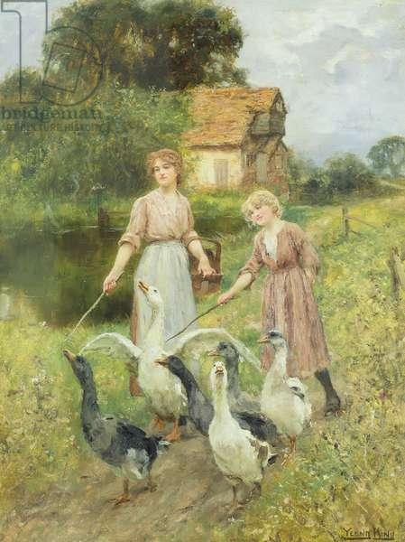 Girls Herding Geese