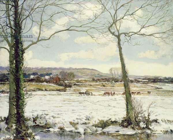 The Frozen Meadow