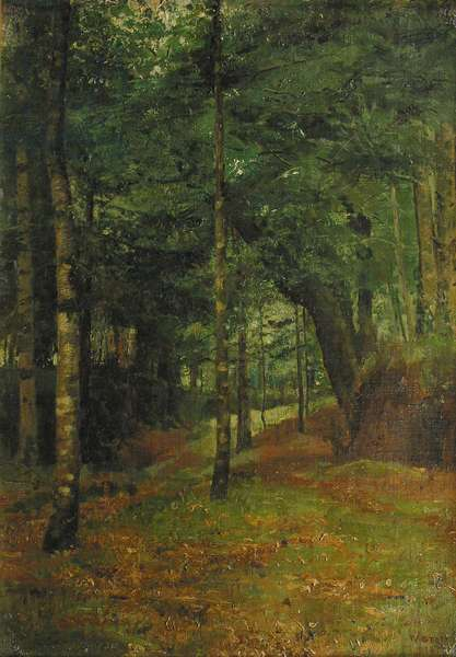 Study of sun shining through the trees, Concarneau (oil on canvas)