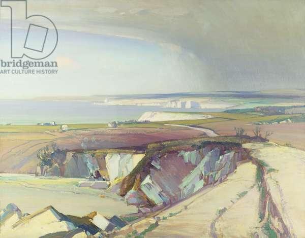 The Serpentine Quarry, near Mullion, Cornwall