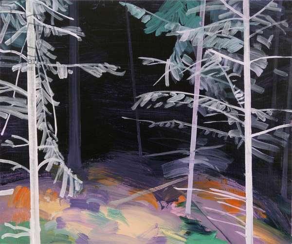 Forêt-noire 5 ,2017 (acrylic on canvas)