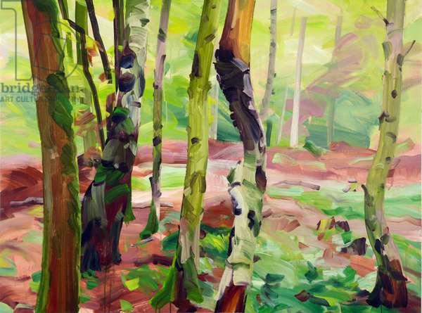 Forêt 21 ,2017 (acrylic on canvas)