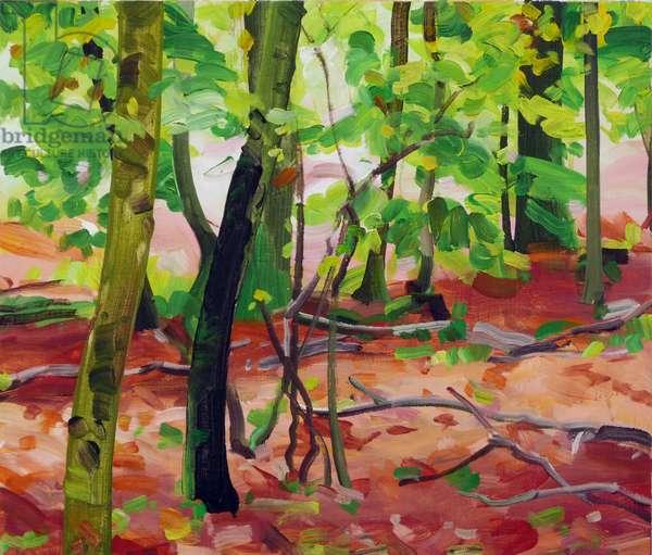 Forêt 17 ,2017 (acrylic on canvas)