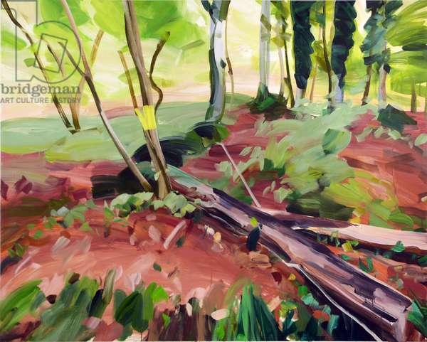 Forêt 25 ,2017 (acrylic on canvas)