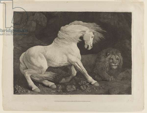 A Horse Frightened by a Lion, after George Stubbs (1724-1806), 1788 (engraving by mixed methods on laid paper)
