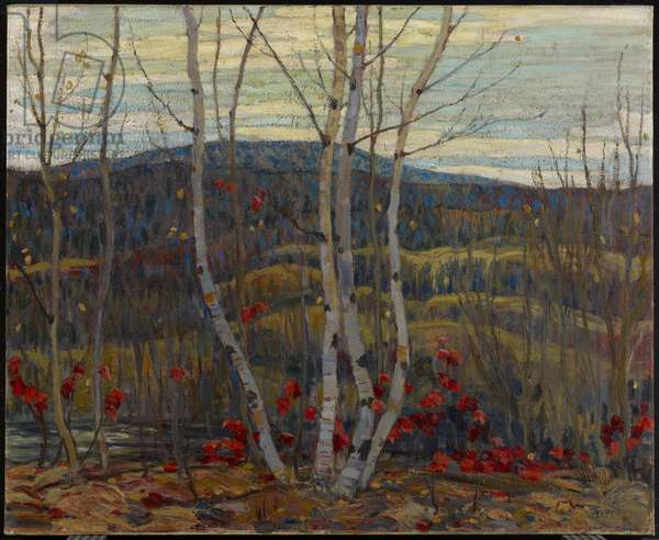 Maple and Birches, 1915 (oil on canvas)
