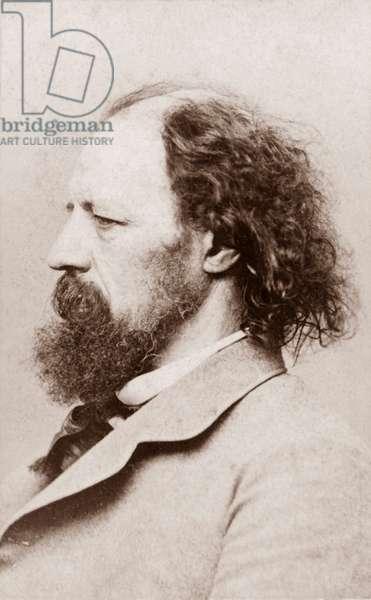 Portrait de Lord Alfred Tennyson (1er baron Tennyson), poete et auteur dramatique anglais (1809 a 1892)