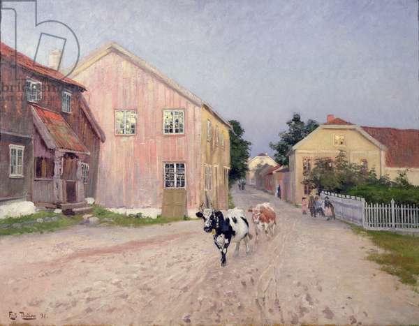 Street in Hokksund, 1891 (oil on canvas)