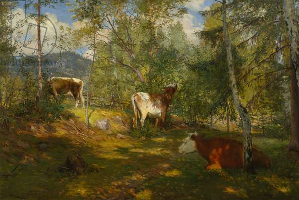 Sunspots in the Forest, 1893 (oil on canvas)