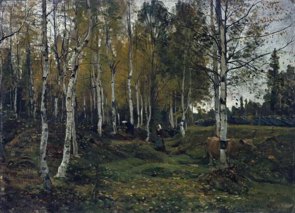 Birch forest in the autumn, 1880 (oil on canvas)