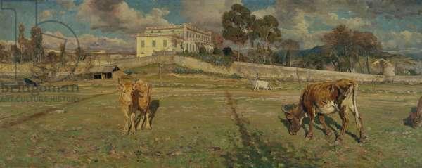 Villa Baciocchi near Ajaccio, Corsica, 1888 (oil on canvas)