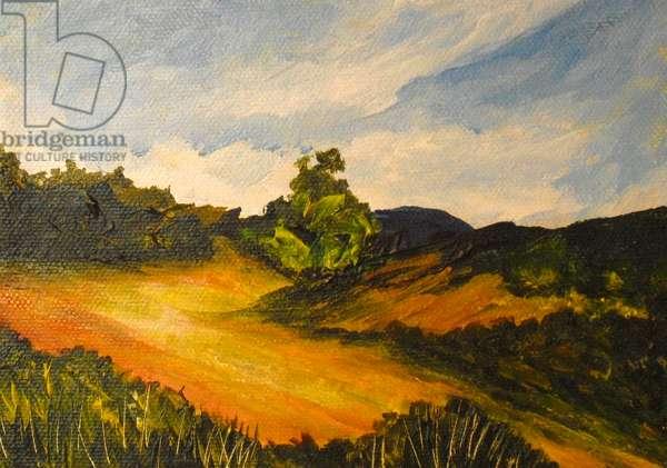 La route de Thiote, 2014 (acrylic on canvas)